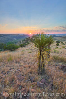 davis mountains, davis mountains state park, fort davis, skyline drive trail, texas state parks, sunrise, texas sunrise, texas hikes, texas landscapes, hiking, texas, yucca