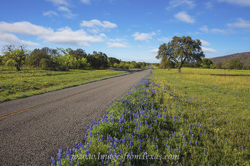 Early Spring Texas Hill Country Roads 2