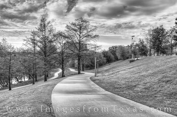 Eleanor Tinsley Park Spring Black and White 328-1