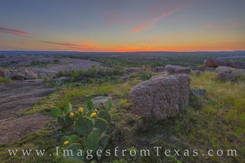 texas hill country, enchanted rock, prickly pear, cacti, wildflowers, prickly pear blooms, little rock, hills, central texas, texas state parks, sunset, evening, May