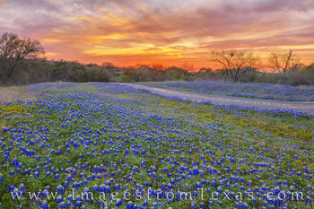 bluebonnets, hill country, llano, castel, FM 152, sunset, texas hill country, backroads, orange, peace, blue