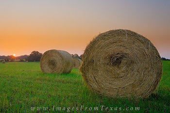 Hayfield Sunrise 2 - Texas Hill Country