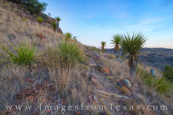 Hiking in the Davis Mountains 2