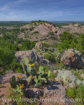 enchanted rock, turkey peak, hill country, prickly pear, afternoon, spring, april, may, state parks, texas state parks, hiking, hot