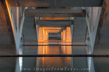 austin sculler,sculling,austin texas,stock photos,lady bird lake photos,sunrise austin