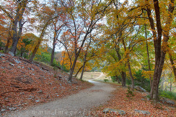 lost maples state park,texas hill country,east trail,autumn in texas,fall colors,red maples