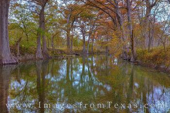 fall colors, autumn, cypress, medina river