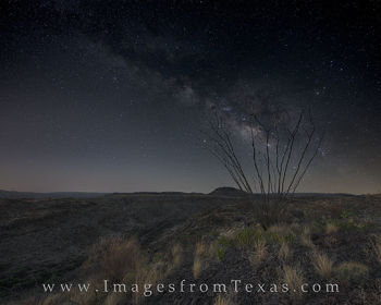 big bend, milky way, big bend ranch, fresno trail, night, west texas, stars, texas night sky