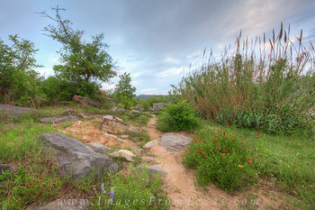 texas hill country photos,pedernales falls state park,pedernales falls,texas landscape,texas wildflowers