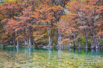 frio river, garner state park, fall colors, autumn, cypress, clear, morning, state park prints