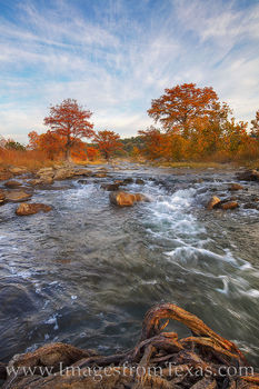 pedernales river, pedernales falls, morming, fall, autumn, cypress, colors, fall colors, hill country