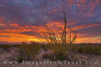 Big bend national park, big bend images, sunrise, chihuahuan desert, desert sunrise, sierra del carmen, big bend morning, texas national park, national park images, texas hikes, texas adventures