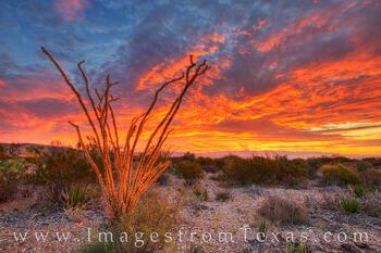 big bend national park, sunset, texas sunset, ocotillo, texas landscapes, chihuahuan desert, chisos mountains