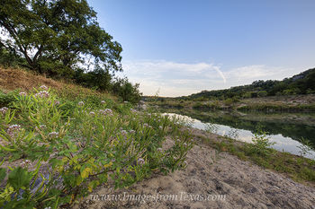 texas wildflowers,texas hill country,pedernales river,pedernales falls,texas landscapes