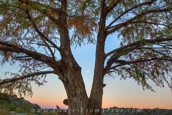 Pedernales Falls - Full Moon at Sunrise