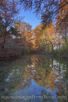 Sabinal River Autumn Colors 1