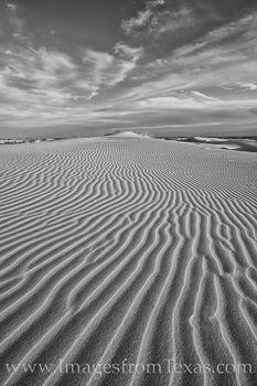 monahans, sand dunes, sandhills, sandhills state park, black and white, west texas, sand, dunes