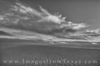 Sand Dunes Spring Sunset Black and White 1