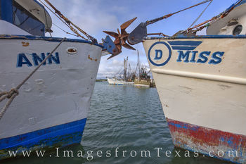 shrimp boats, port isabel, boats, south padre, texas coast, shrimpers, gulf of mexico, south bay, ocean