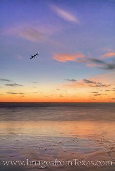 South Padre Island before Sunrise 5