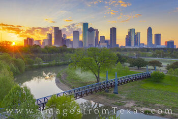 Spring Morning near Downtown Houston 329-12