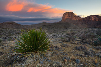 guadalupe national park,guadalupe mountains national park,texas national park,guadalupe peak,g,el capitan images