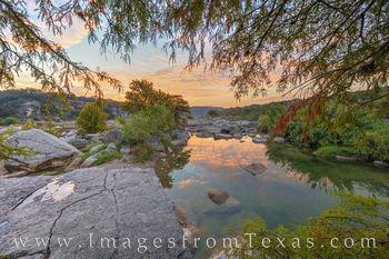 Sunrise through the Cypress 1