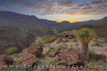 big bend ranch, rio grande, river road, FM 170, west Texas, sunset, texas landscape, yucca, big bend prints, texas prints