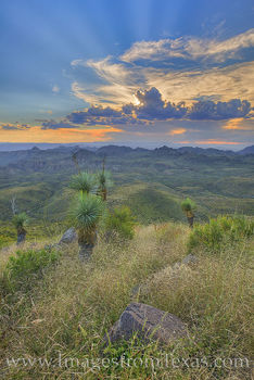 oso mountain, oso peak, big bend ranch state park, hiking, dirt road, sunset, mountains, big bend ranch, yucca, cacti, desert