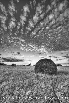 texas sunset, texas hay, hay bales, texas ranch images, texas landscapes, texas sunset images, texas photos, texas prints, black and white