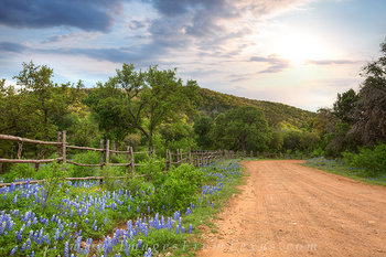 Texas Country Roads 1