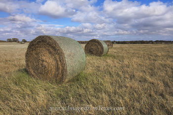 hay bales,bales of hay,texas ranch,texas ranch images,hay images,hay bale images,texas landscapes