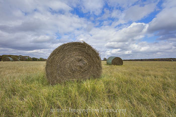 hay bales,texas ranch,texas hay,hay,texas landscapes,prints,images