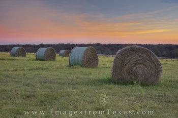 Texas Hay Bales at Sunrise 1