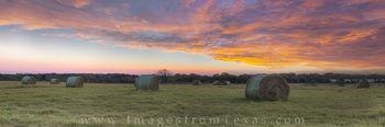Texas Hay Field Panorama at Sunrise 1