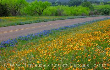 Texas Highways in Spring 412-1