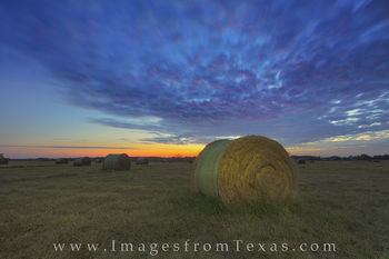 Thanksgiving Hay Bale Sunrise on a Texas Ranch 1
