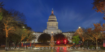 texas state capitol, state capitol, congress avenue, congress, christmas tree, christmas, holiday, december, holiday tree, christmas card, season greetings, season, greetings, texas, capitol
