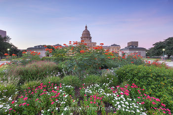 texas state capitol,state capitol gardens,austin texas images,texas capitol prints,texas capitol flowers