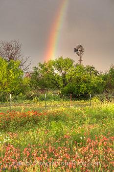 Texas Windmill and Rainbow