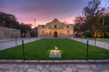 The Alamo at Sunrise 2
