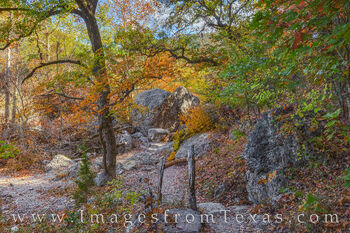 lost maples, lost maples print, maple trees, texas state park, maple trail, november, fall, autumn, red, orange, hill country