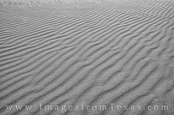 sand dunes, black and white, sandhills, sandhills state park, texas parks, sand, monahans, I-20, wind