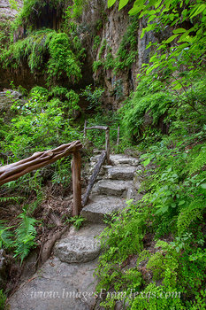 texas hill country,westcave preserve,hamilton pool,hill country images