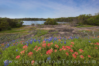 indian paintbrush, bluebonnets, wildflowers, texas wildflowers, inks lake state park, inks lake, afternoon, hill country, texas drives