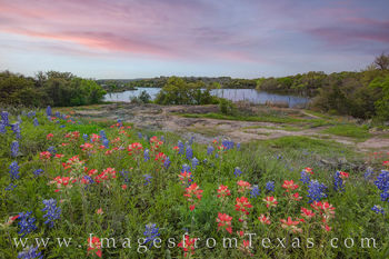 bluebonnets, paintbrush, inks lake, state parks, sunset, hill country drives, peace