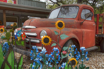 Wimberley Bluebonnets and an Old Dodge Truck 1