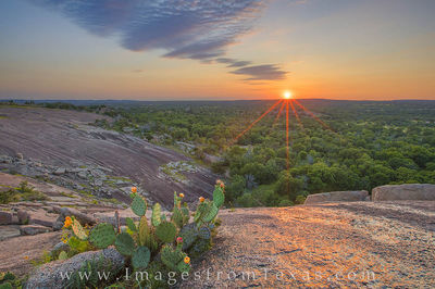 enchanted rock, texas hill country, prickly pear, texas wildflowers, texas sunset, hill country sunset, hill country photos, texas landscapes