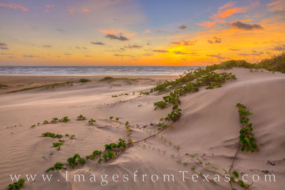 South Padre Island in May