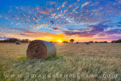 texas hay bales,bales of hay,texas sunset,hay bale images,texas landscapes